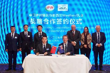 Chinese dairy giant Yili acquisitions New Zealands Westland