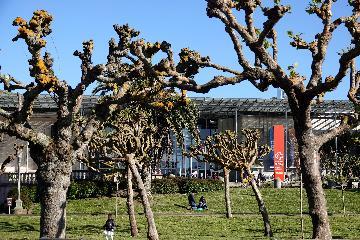 Upcoming Beijing horticultural expo opens door to greener future