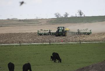 U.S. farm groups want open markets, not gov't aid