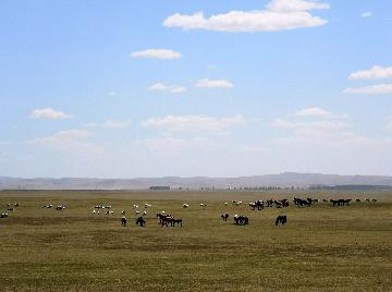 Inner Mongolias senior official under investigation