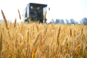 Trade frictions not to dampen Chinas key agricultural supply, trade