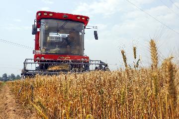 Chinas farm mechanization rate exceeds 70 pct in 2019