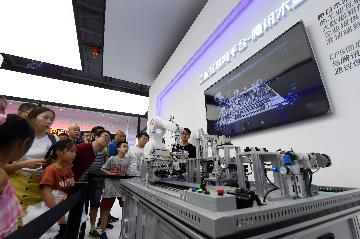 Chinas industrial output expands 6 pct in H1
