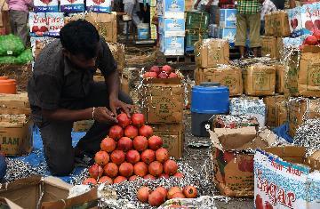 專訪:印度經濟無法在貿易緊張局勢下獨善其身--訪印度經濟學家巴塔查吉
