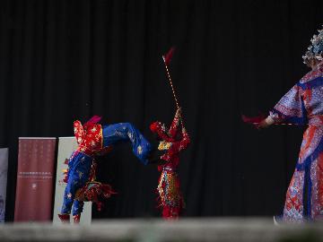 """中国戏曲走进哥本哈根歌剧节 """"翎子功""""撩动观众心弦"""