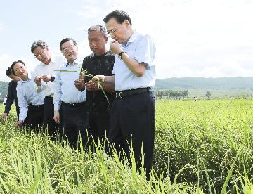 李克强在黑龙江考察时强调  更大力度改革开放创新 促进经济平稳发展和民生改善