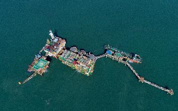 我国渤海再获重要油气发现