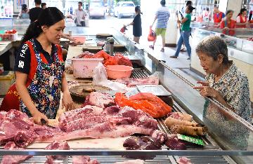 Chinas pork imports up in August