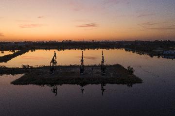 证监会批准大商所开展液化石油气期货及期权交易