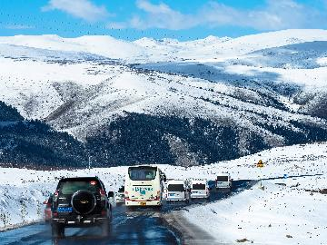 (新華全媒頭條)格桑花開滿天路--寫在川藏公路通車65周年之際
