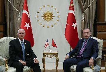 """土美就土在叙北部暂时停火和建立""""安全区""""达成协议"""