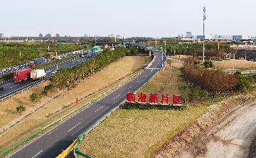 一批重点项目落地临港新片区