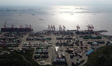 自贸区自贸港领头 2020年对外开放再升级