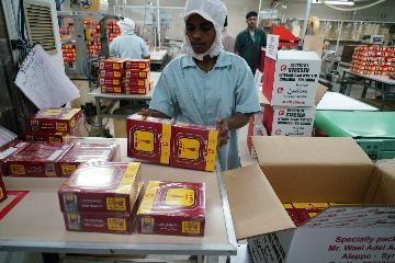 斯里兰卡希望大幅增加对华红茶出口