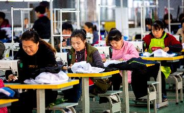 Chinas employment stable in first 10 months