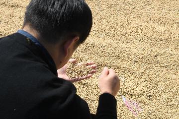 Chinas major grain producer to further reduce pesticide use