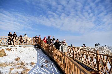 Chinas 2019 inbound tourism revenue expected to surpass 130 bln USD