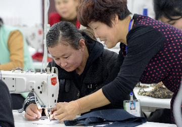 Chinas employment stable in first 11 months