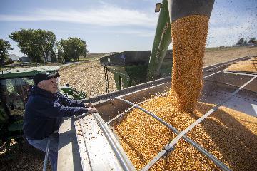 中国农业农村部公布一批农业转基因生物生产应用安全证书和进口安全证书