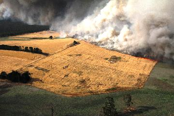 "Cost of Australian bushfire crisis ""unprecedented"": recovery boss"