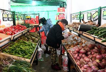 1月份全国居民消费价格同比上涨5.4%