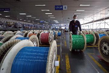 多重利好发酵 光纤光缆行业步入早春