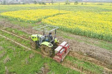 農業農村部:做好2020年農業農村政策與改革相關重點工作