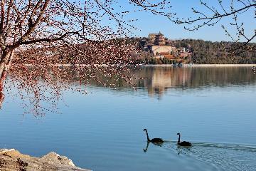 北京水生態提前達到2020年國家考核目標