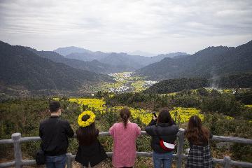 中国各地景区陆续恢复开放 旅游业期待春暖花开
