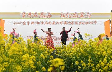 Henan to offer 1 bln yuan of loans to virus-hit cultural, tourism sectors