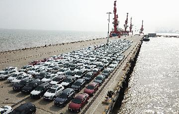 China mulls temporarily adjusting relevant laws in Hainan pilot FTZ