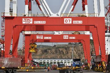Chinas exports, imports up in June