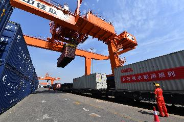 Tianjin Container Freight Index up 0.2 pct