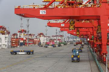 Chinas pilot FTZs see robust investment, trade