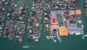 海南自由貿易港服務貿易快速增長