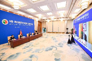 China, Arab countries adopt declaration, action plan to deepen cooperation