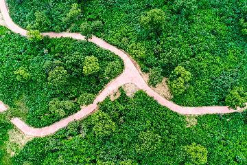 京津風沙源治理工程20年累計完成營造林902.9萬公頃