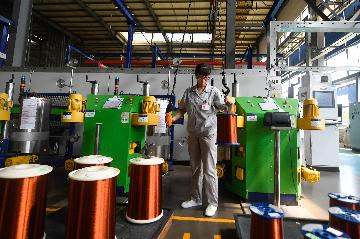 Chinas industrial output up 4.8 pct in July