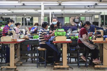 Chinas employment steadily recovering: minister