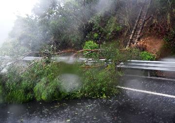Typhoon Mekkhala makes landfall in Chinas Fujian