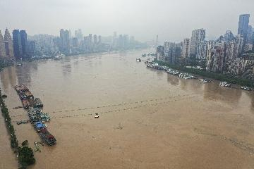 Yangtze water level in Chongqing reaches record high