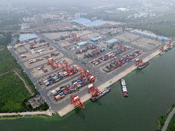 2020年二十國集團貿易部長會議取得積極成果