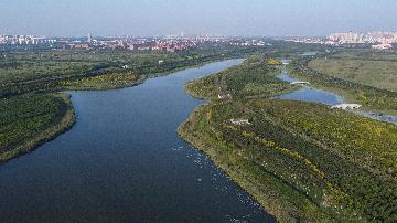 统计局:京津冀区域发展指数持续提升
