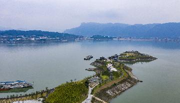 Travel agency business mostly resumed in virus-hit Hubei