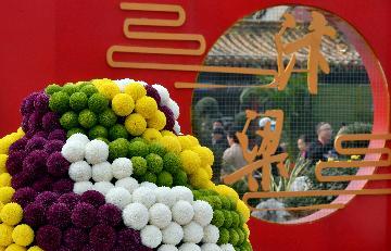 中國開封第38屆菊花文化節開幕 320萬盆菊花綻放