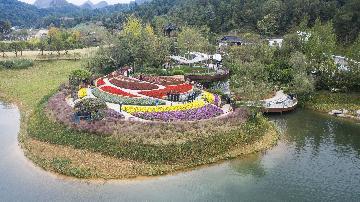 以自然之道,養萬物之生--第四屆中國綠化博覽會亮點掃描