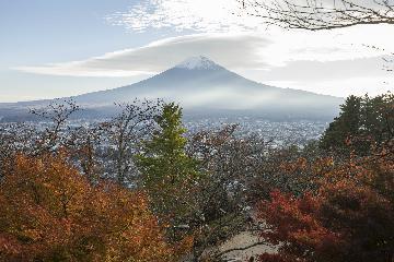 日本国家旅游局:欢迎中国游客在疫后赴日旅行