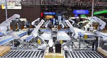 Chinas industrial robot sales down in 2019