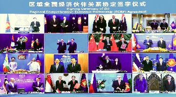 RCEP成中國更高水準開放的廣闊舞臺