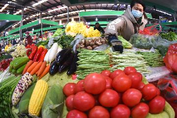 Chinas CPI down 0.3 pct in January